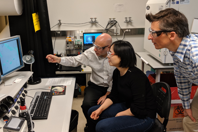 Howard Stone, Judy Yang and Ian Bourg in the lab
